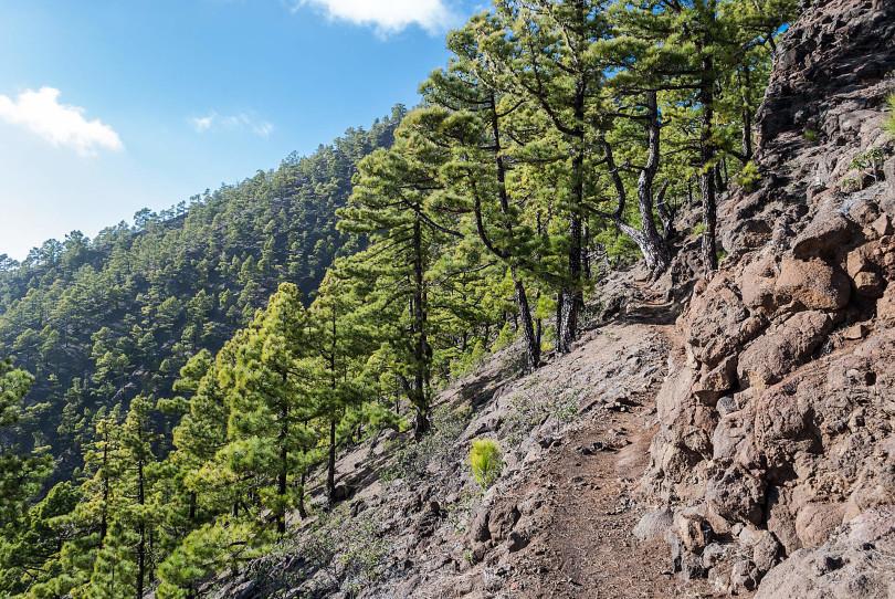La Palma Wanderweg